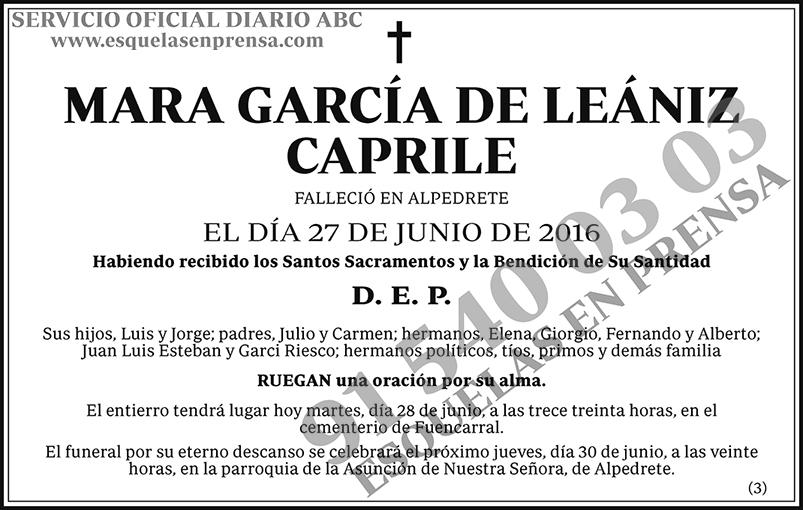 Mara García de Leániz Caprile
